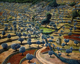 Online Art Gallery of Landscapes and Mindscapes by Mati Klarwein